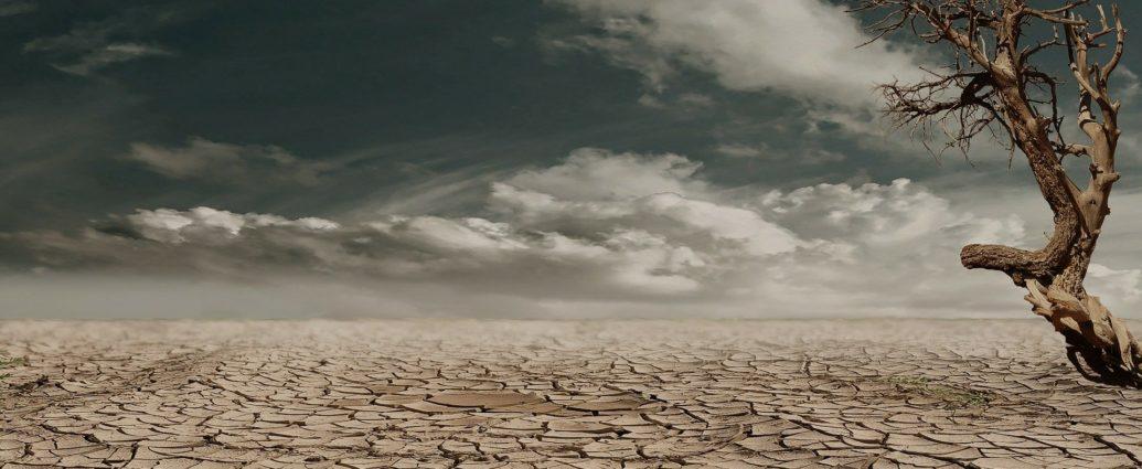 Image de Terre asséchée